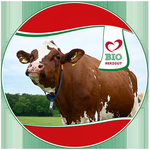HERZGUT Kuhpatenschaft gibt's jetzt auch in Bio